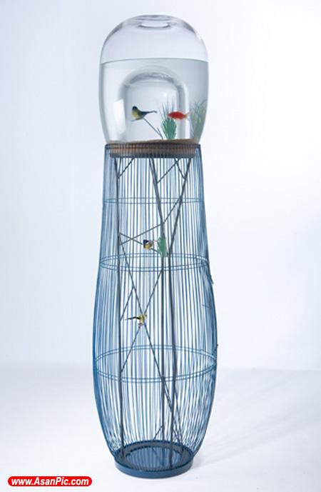 تصاویری از قفس و آکواریوم پرندگان