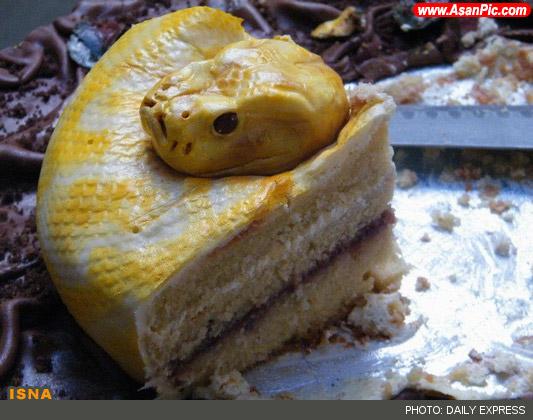 ترسناک ترين كيک تولد