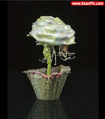 تصاویری زیبا از گل های مصنوعی!
