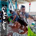 تصاويری از صید ماهی و میگو در جزیره قشم