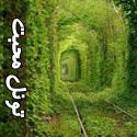 تصاويری از تونل محبت
