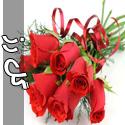 تصاویری از گل های رز