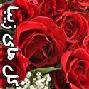عکس هایی از گل های زیبا و رمانتیک - قسمت دوم