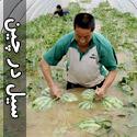 تصاويری از سیل در چین