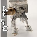 تصاويری خلاق از لباس زرهی برای سگ