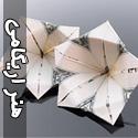 هنرهای اریگامی بر روی دلار