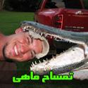 تصاويری جالب از تمساح ماهی