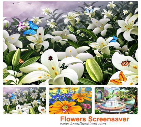 دانلود Flowers Screensaver - محافظ صفحه نمایش زیبای گلها