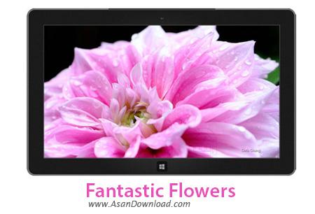 دانلود Fantastic Flowers - پوسته جذاب ویندوز های 7 , 8 و 8.1