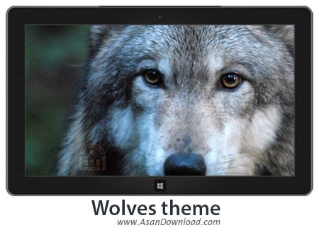 دانلود Wolves theme - پوسته گرگ ها 7 و 8 و 8.1