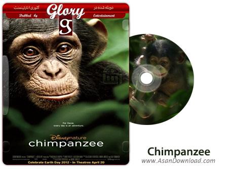 دانلود Chimpanzee 2012 - مستند شامپانزه (دوبله گلوری)